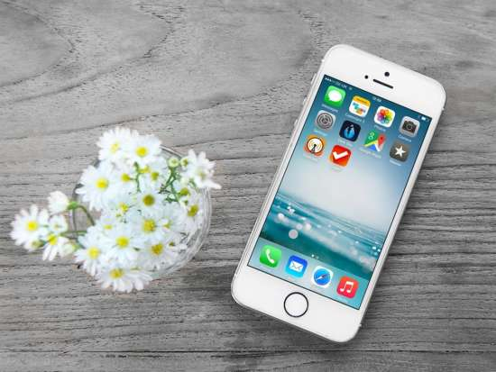 iphone_and_flowers_mockup