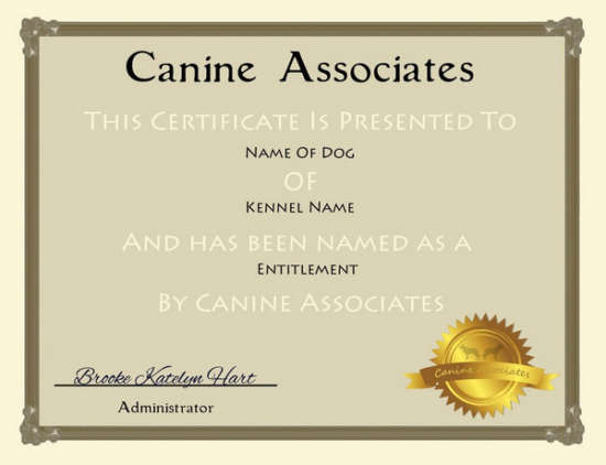 Service Dog Registry Document Center  OSDR Document Center