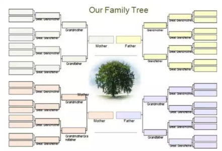 Download 10 free genogram templates examples xdesigns our family tree template saigontimesfo