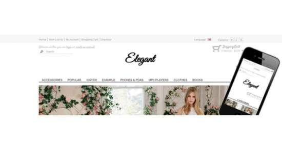 elegant_responsive_shop