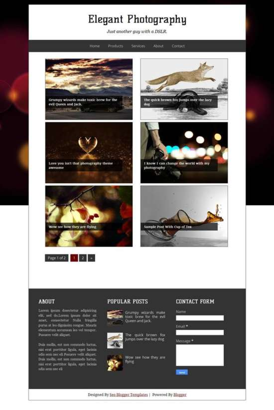 elegant_photography_blogger_template_screenshot