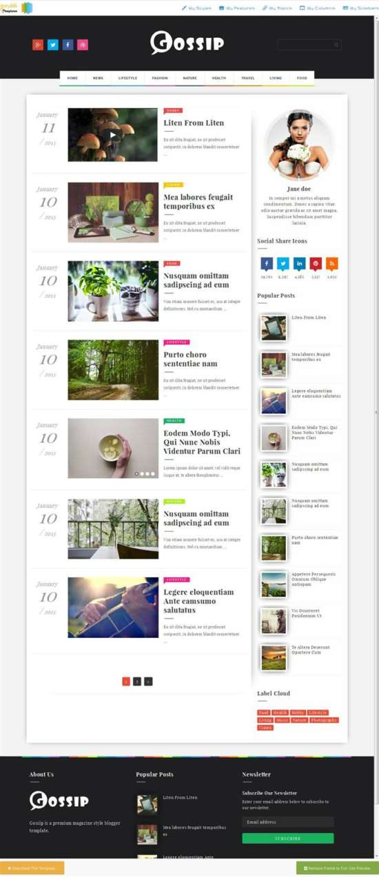 gossip_photography_blogger_template_screenshot