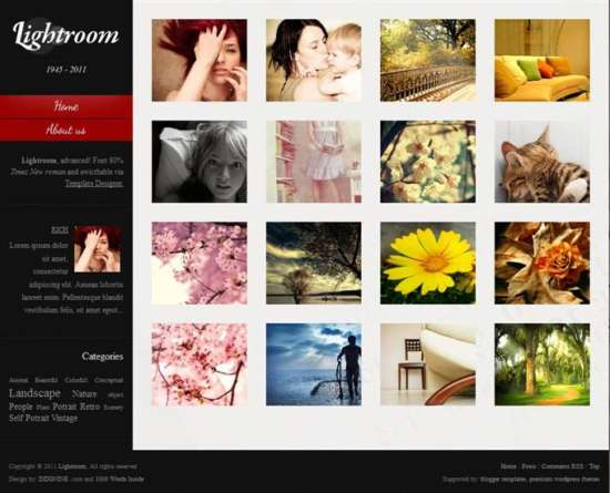 lightroom_advanced_photography_free_blogger_template_screenshot
