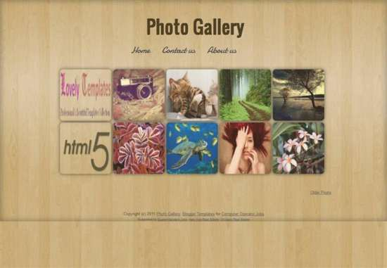photo_gallery_photography_blogger_template_screenshot