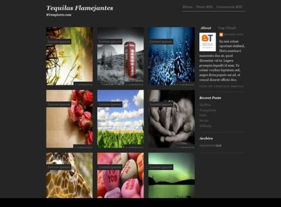 tequilas_flamejantes_blogger_template_screenshot