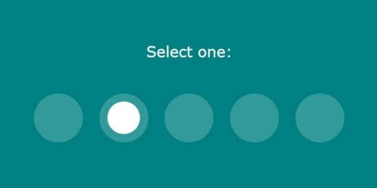 css_selected_radio_button