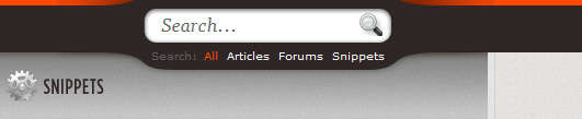 search_form_with_css3_and_jquery