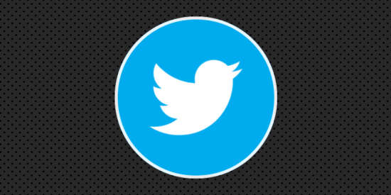 twitter_logo_css_animated_button