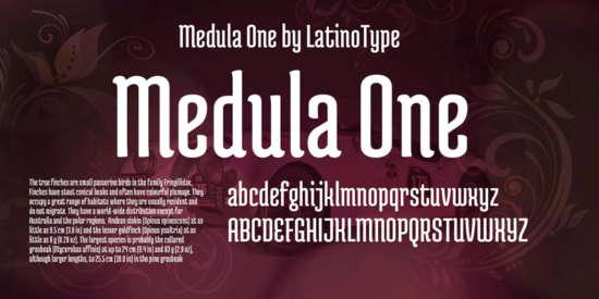 medula_one_headlines_organic_modern_font
