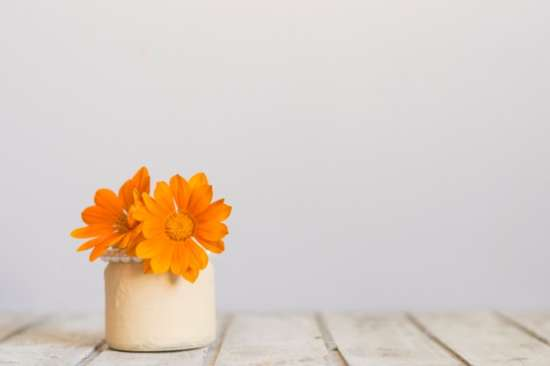 wooden_surface_with_vase_and_awesome_orange_flowers