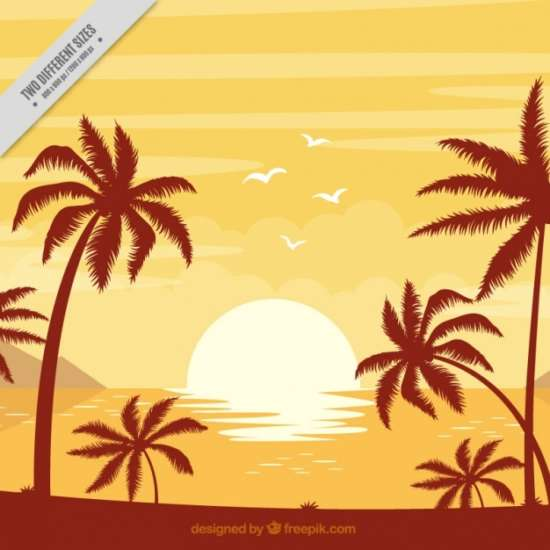 background_of_beach_with_palm_trees_at_sunset