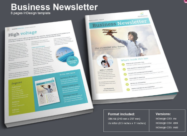 Modern Business Newsletter (InDesign)