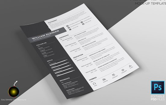 clean_resume_cv_mockup