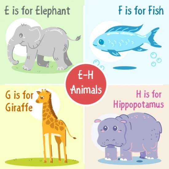 e_to_h_animals_collection