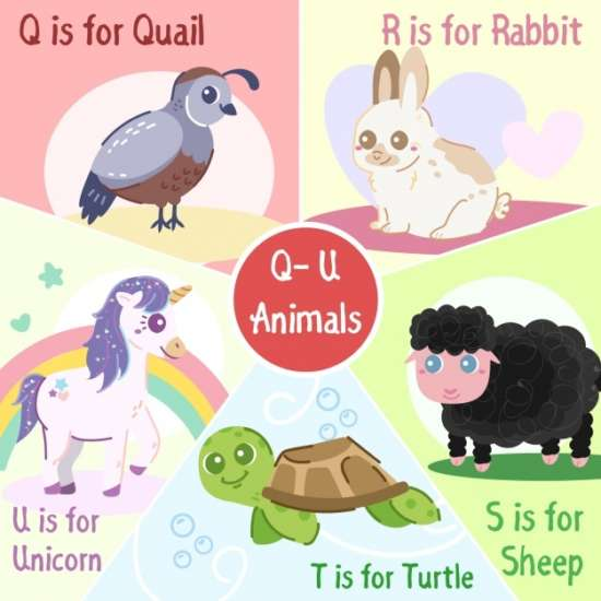 q_to_u_animals_collection
