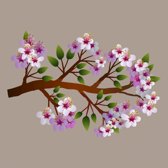 free_spring_clip_art_flowers
