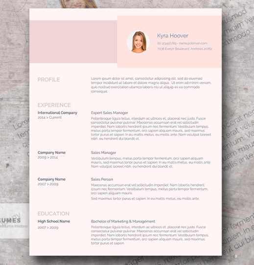 misty_rose_modern_pink_resume_design