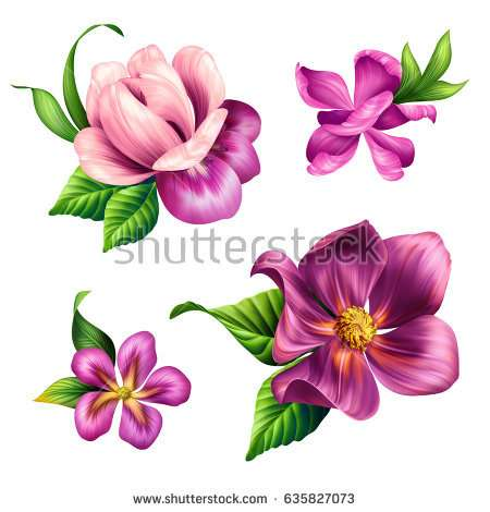 beautiful_tropical_nature_pink_flowers_clip_art