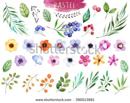 colorful_floral_collection_with_multicolored_flowers
