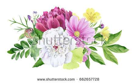 hand_painted_watercolor_watercolour_floral_clipart