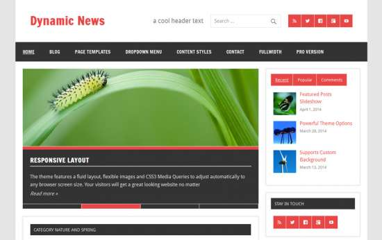 dynamic_news_free_wordpress_theme