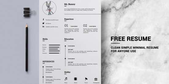 free_minimal_resume_psd