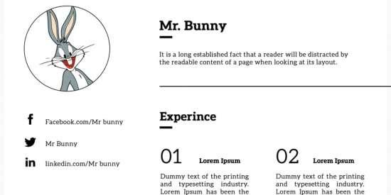 free_minimalistic_resume_template_psd