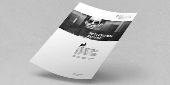 free_profesional_resume_template_pdf_idml_indd