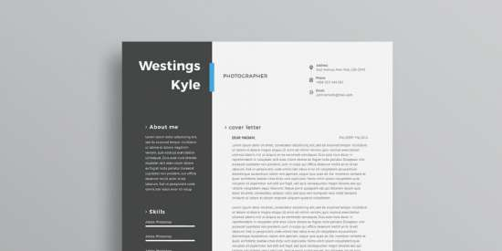 free_professional_resume_template_psd