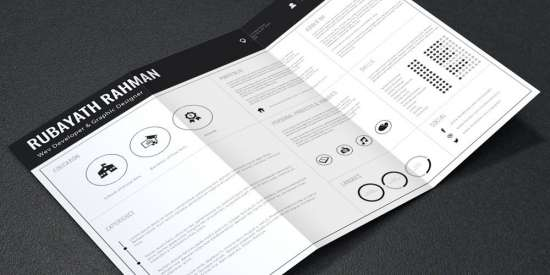 professional_resume_cv_template_ai