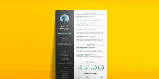 simple_and_clean_resume_cv_template_psd