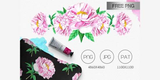 free_watercolor_peony_png