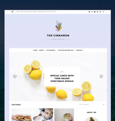 cinnamon_casual_grid_tumblr_theme