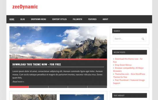 zeedynamic_free_wordpress_theme