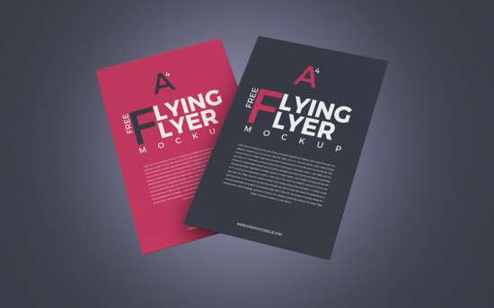2_flying_flyer_mockup