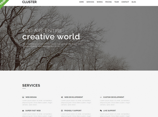 flatfy_free_one_page_bootstrap_template