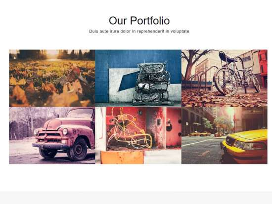 navigator_free_one_page_bootstrap_template