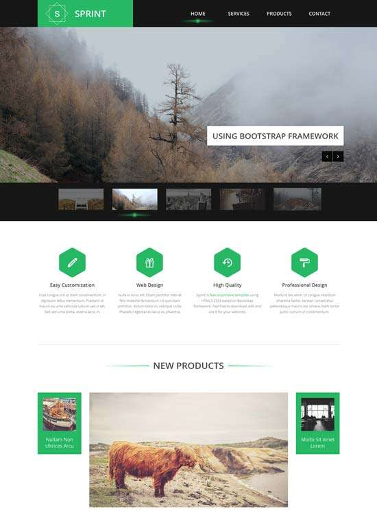sprint_free_responsive_single_page_template