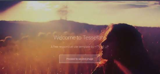 tessellate_one_page_website_template