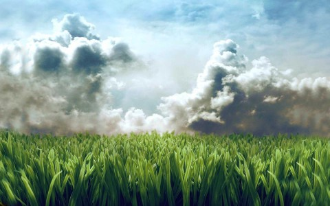 clouds grass skyscapes 1680x1050